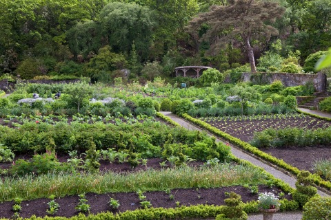 The Kitchen Garden at Glenveagh Castle © Jonathan Hession